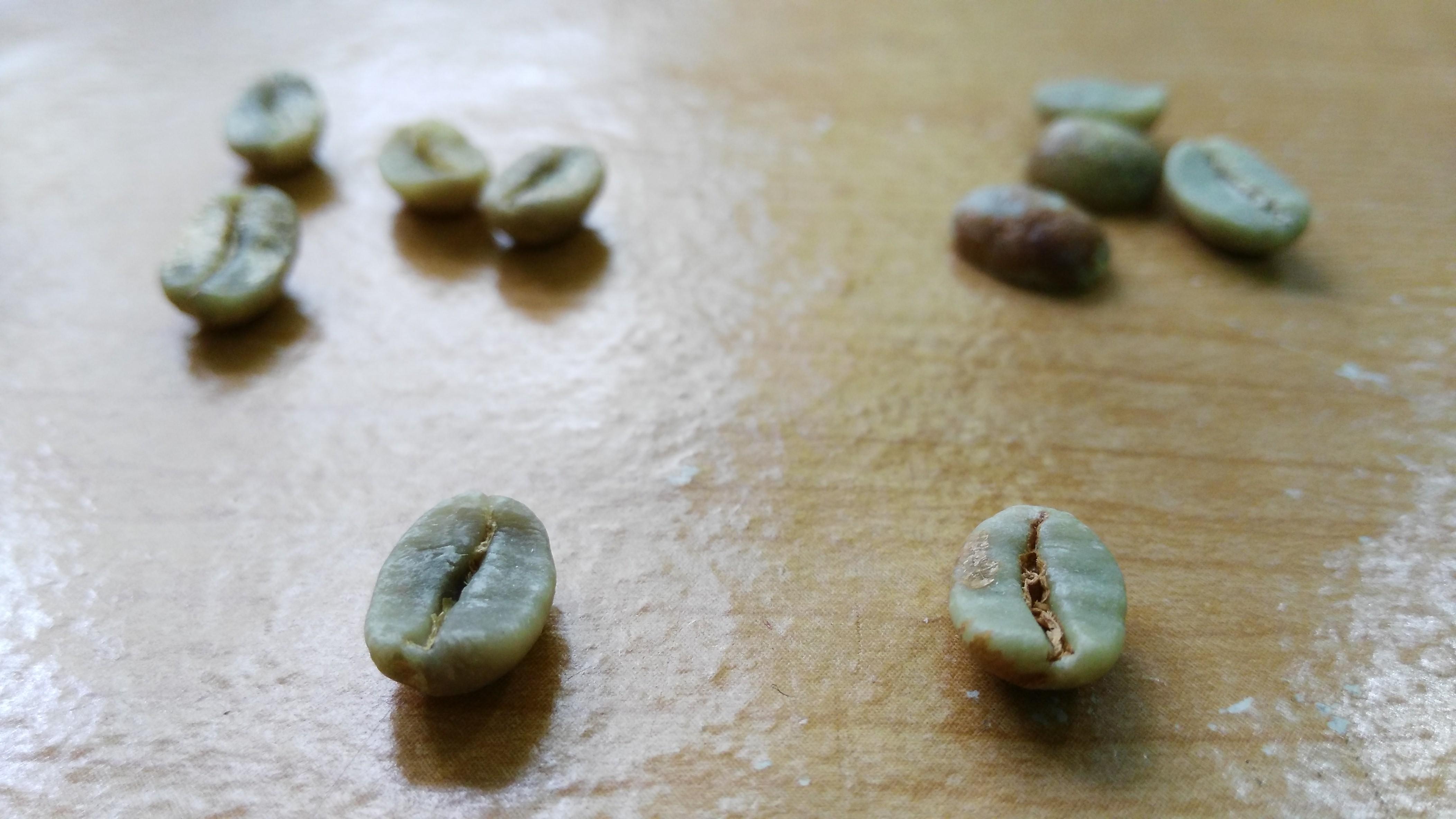 กาแฟดายโพรเซส ( DRY PROCESSING COFFEE )