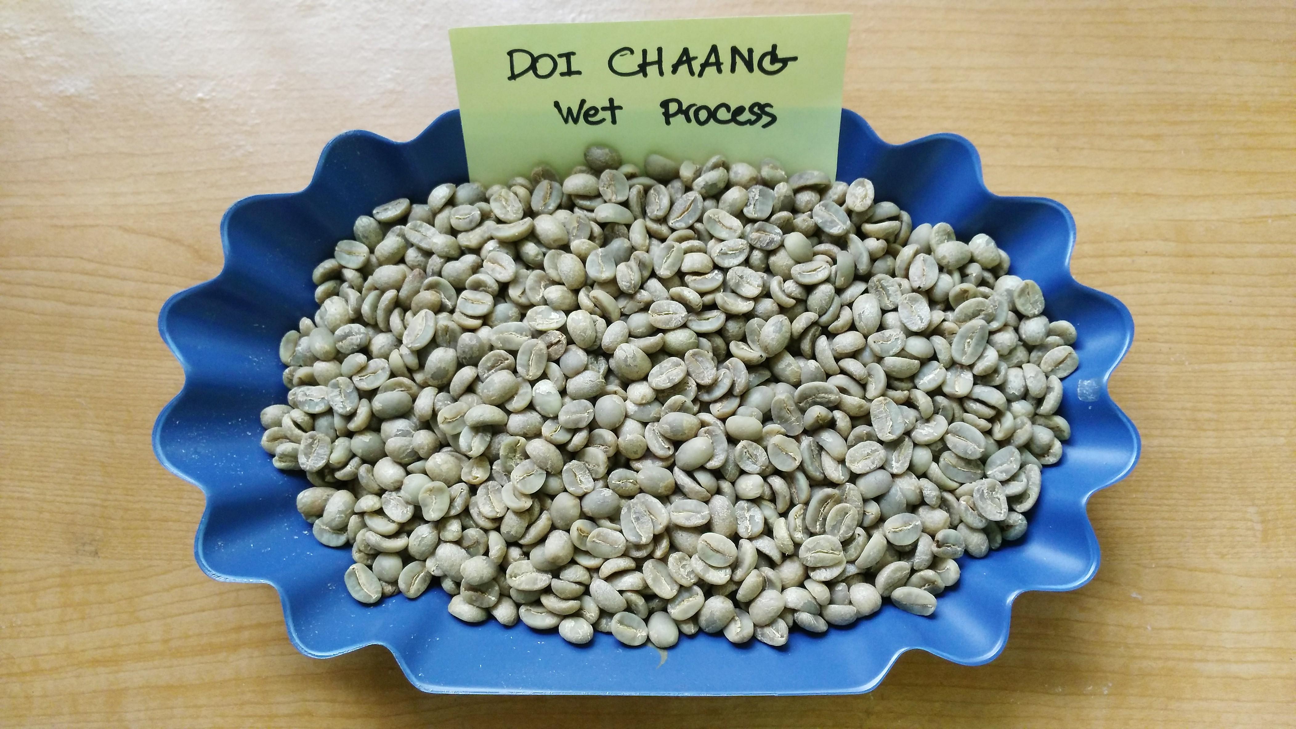กาแฟสารดอยช้าง WET PROCESS