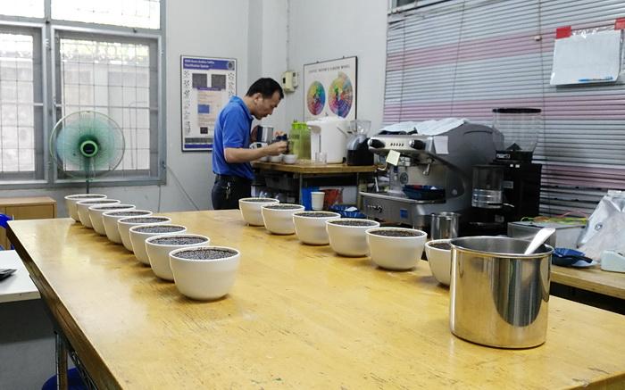 การชิมกาแฟ ( cupping )