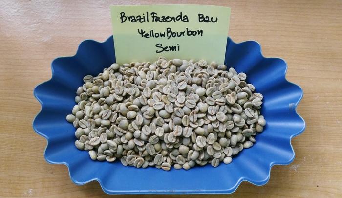 กาแฟบราซิล ( Brazil Fazenda Bau Yellow Bourbon Semi )