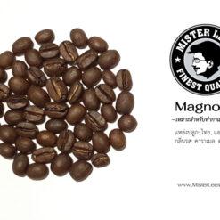 เมล็ดกาแฟคั่ว Magnoila