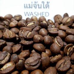เมล็ดกาแฟแม่จันใต้ Washed