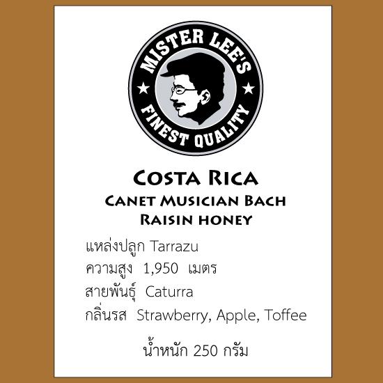 กาแฟคอสตาริกา Costa Rica Canet Musician Bach