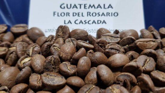 Guatemala Flor del Rosario la Cascada 4