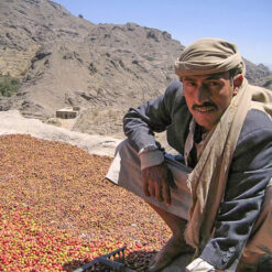 Yemen Mattari Bani Matar