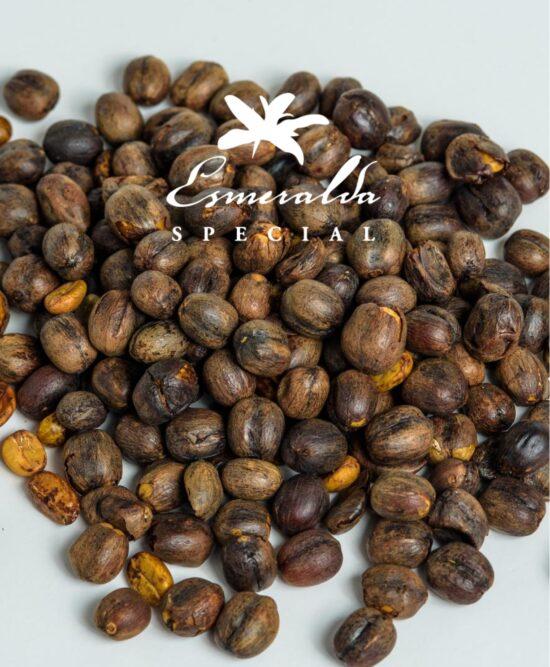 Panama Geisha Esmeralda Special - Bean