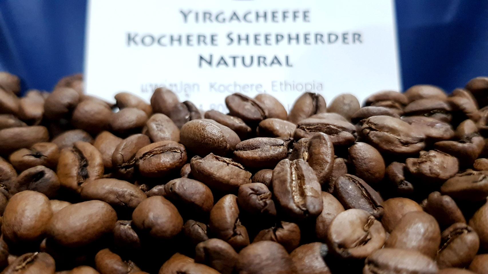เมล็ดกาแฟเอธิโอเปีย Ethiopia Yirgacheffe Kochere Sheepherder Natural