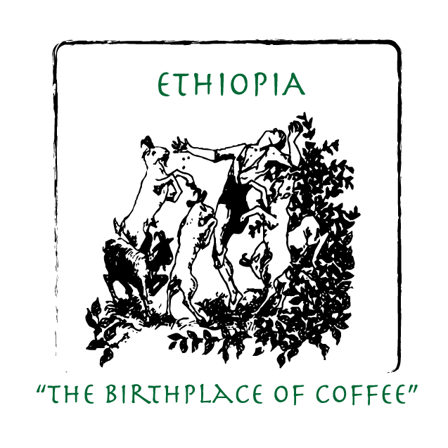 กาแฟเอธิโอเปีย Ethiopia Yirgacheffe Kochere Sheepherder Natural
