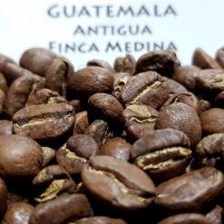 เมล็ดกาแฟกัวเตมาลา Guatemala Antigua Finca Medina