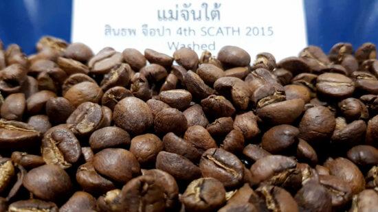 เมล็ดกาแฟ-แม่จันใต้-สินธพ-จือปา-4th-Place-SCATH-2015