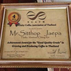 กาแฟแม่จันใต้ สินธพ จือปา