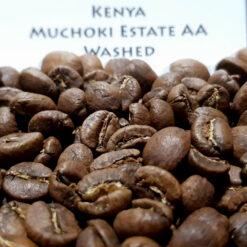 กาแฟคั่ว Kenya Nyeri Muchoki Estate AA