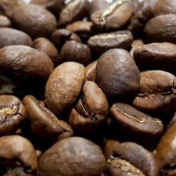 Omni (Filter&Espresso)