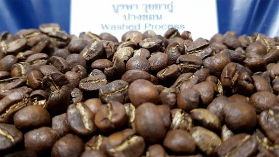กาแฟปางขอน บูรพา วุยยากู่