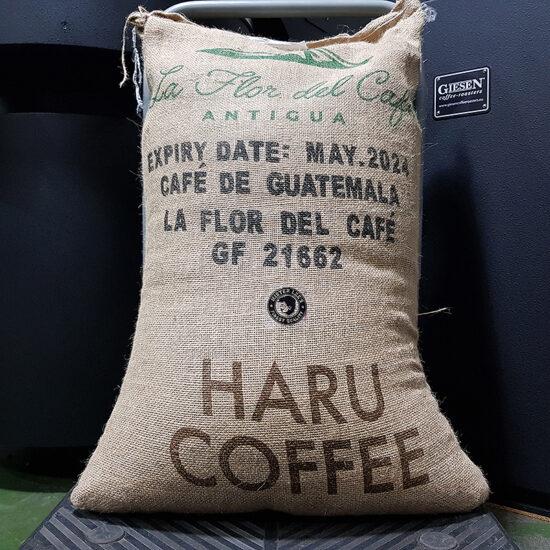 guatemala-la-flor-del-cafe-bag